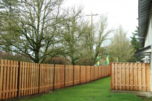 New fencing surrounds the Trymax Apartments